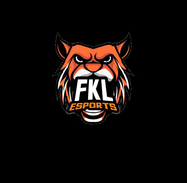 Фото - FKL eSports